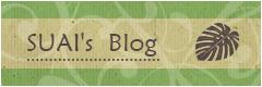SUAI's  Blog